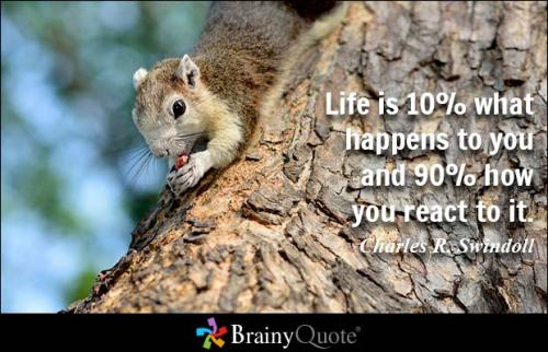 Brainy Quote Charles R Swindoll 001