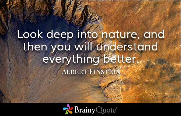 brainy quote look deep into nature and then you will understand