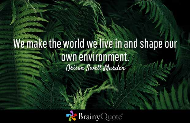 Brainy Quote We Make The World We Live In And Shape Our Own