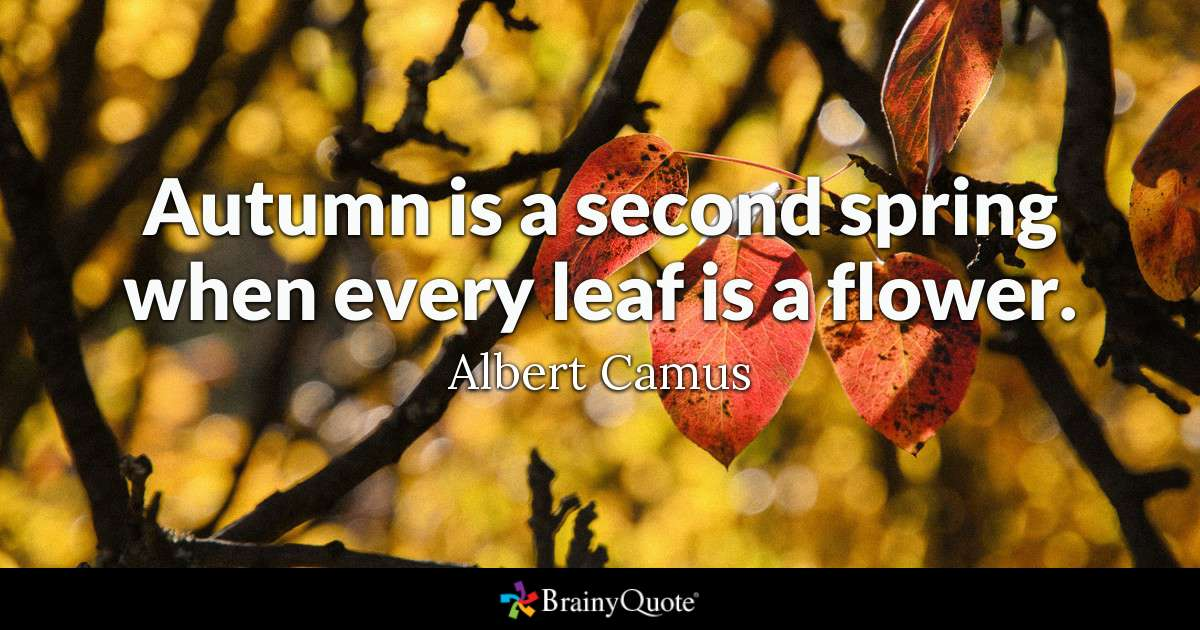 brainy quote autumn is a second spring when every leaf is a